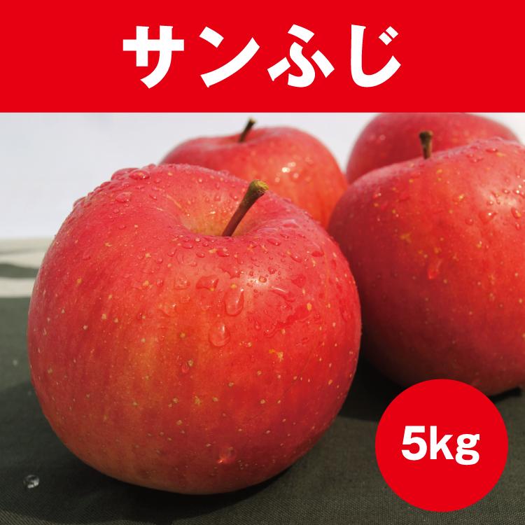 【家庭用】サンふじ 約5kg