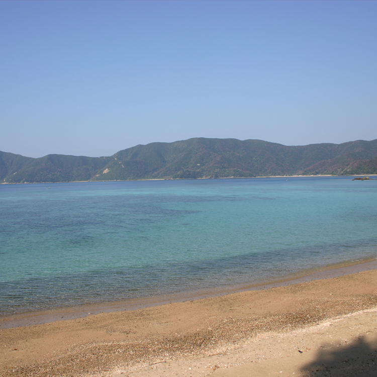 奄美大島(鹿児島)の南西に浮かぶ加計呂麻(かけろま)島