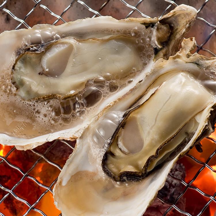 豊前海一粒牡蠣 約3㎏