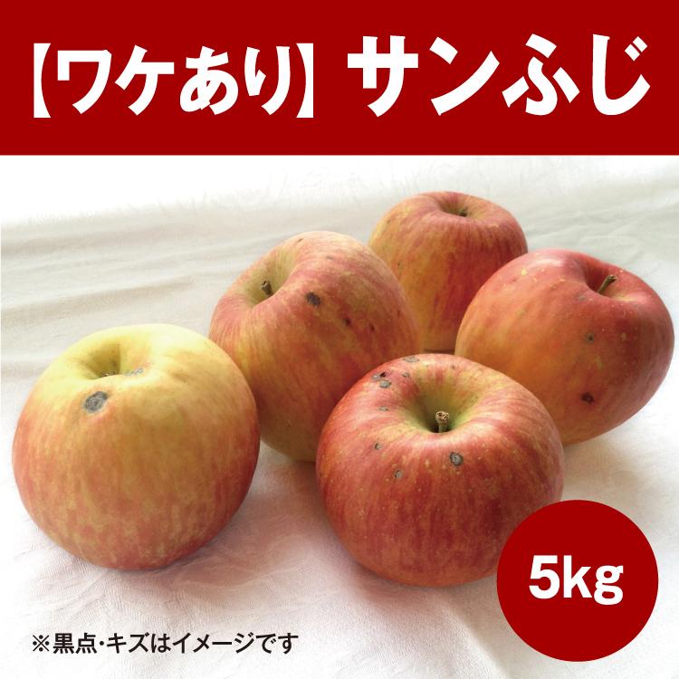 【ワケあり】サンふじ5kg