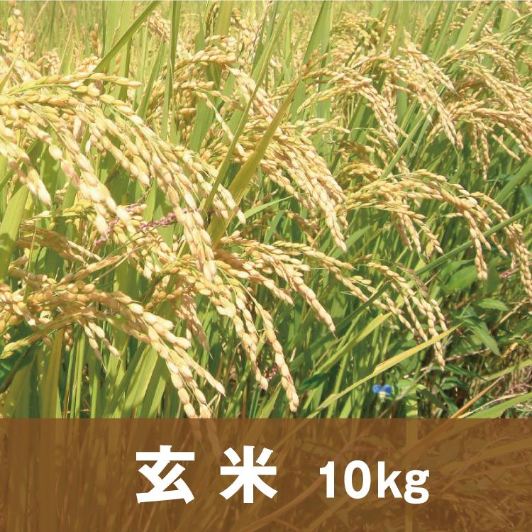 自然純米【玄米】10キロ