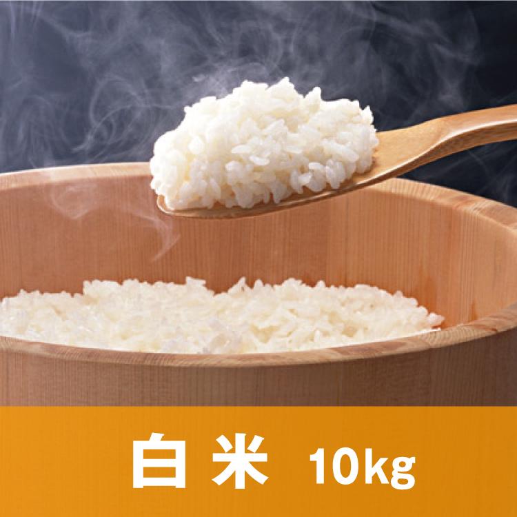 自然純米【白米】10キロ
