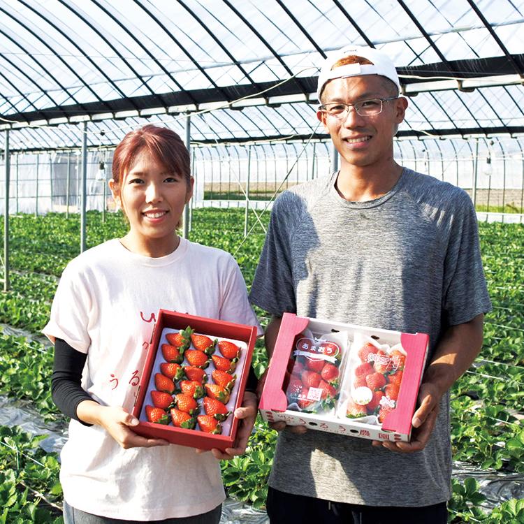うるう農園の心のこもったイチゴをお届けします。