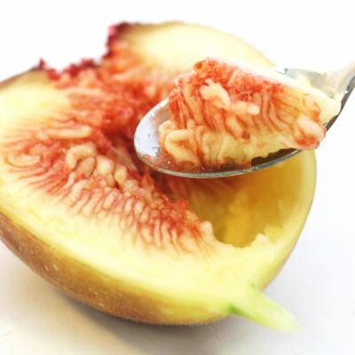 ルビー色の果実部分はトロっとした甘さにプチプチ食感