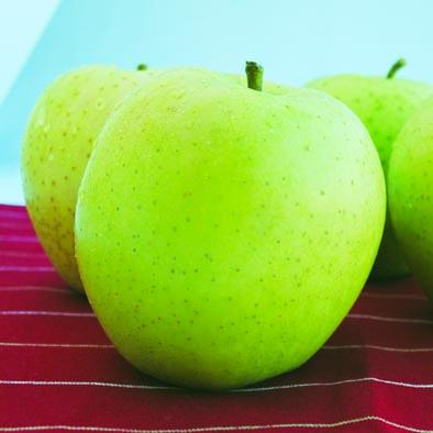 2回目「王林」。青リンゴの代表品種。爽やかな甘さが特徴。