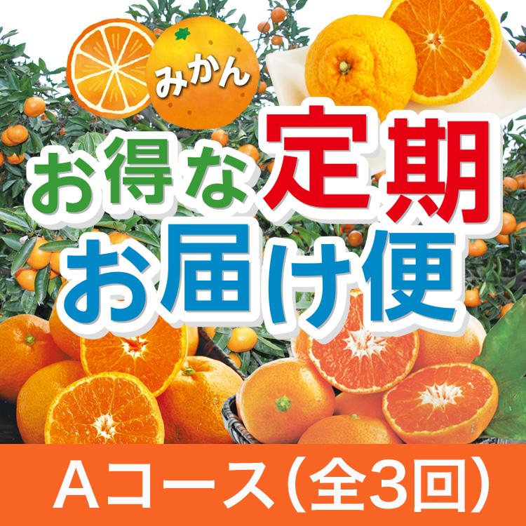 みかん「お得な定期お届け便」★Aコース★全3回