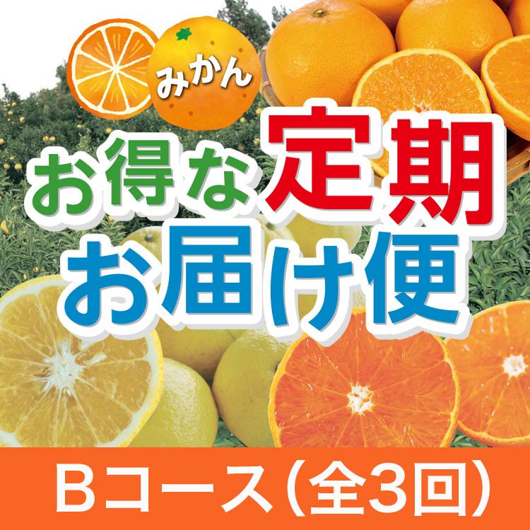みかん「お得な定期お届け便」★Bコース★全3回