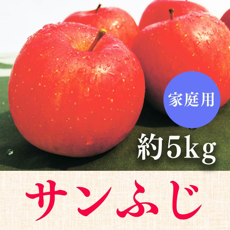 サンふじ【家庭用】約5kg